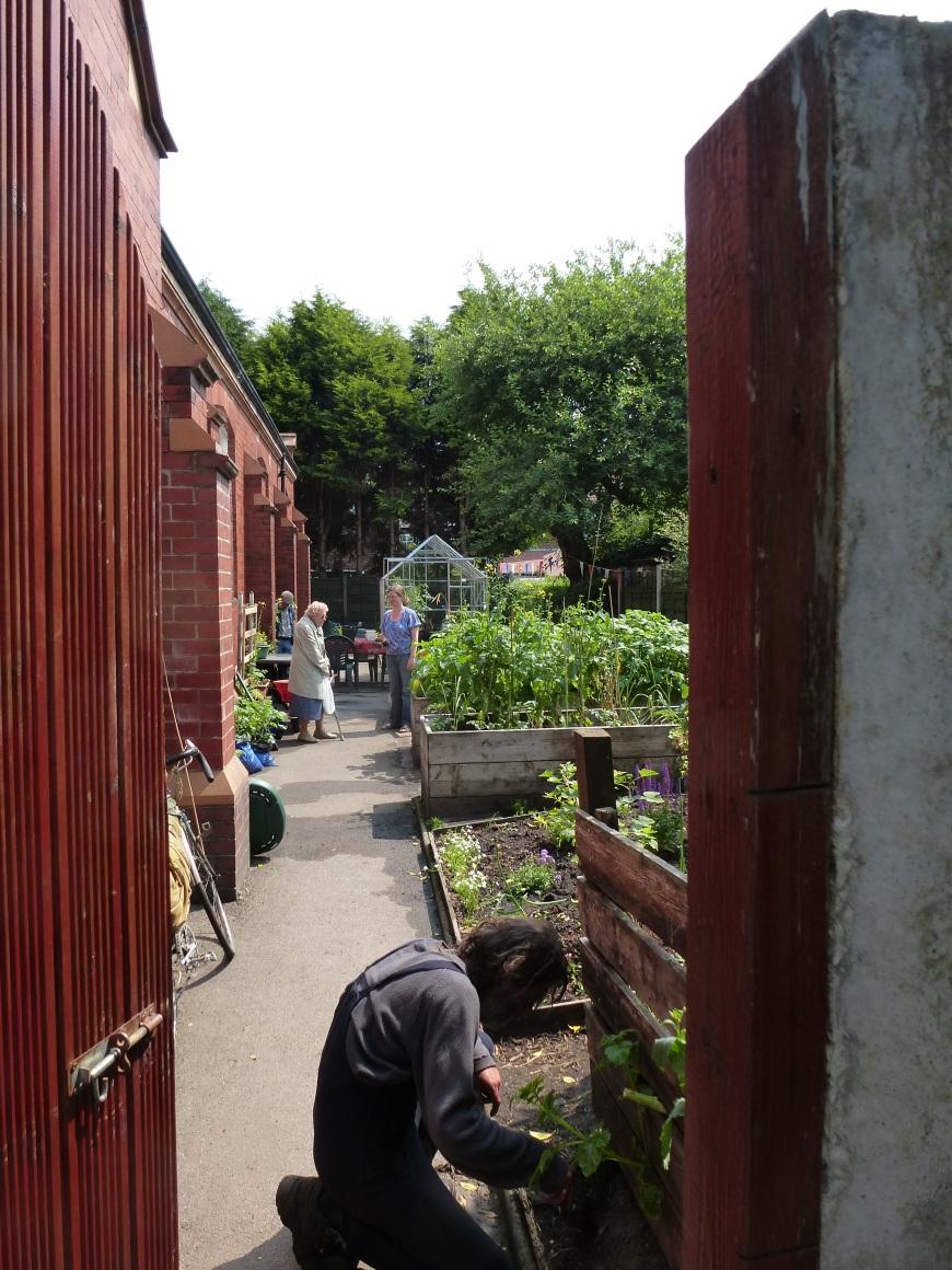 cgn garden 05