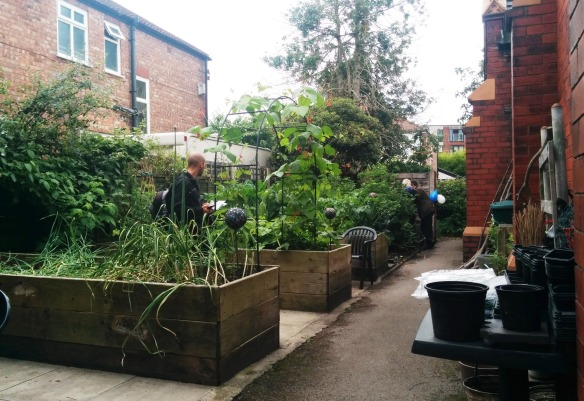 open garden June 26 (2)