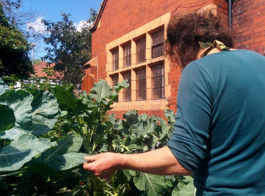 cgn garden 22 July (4)